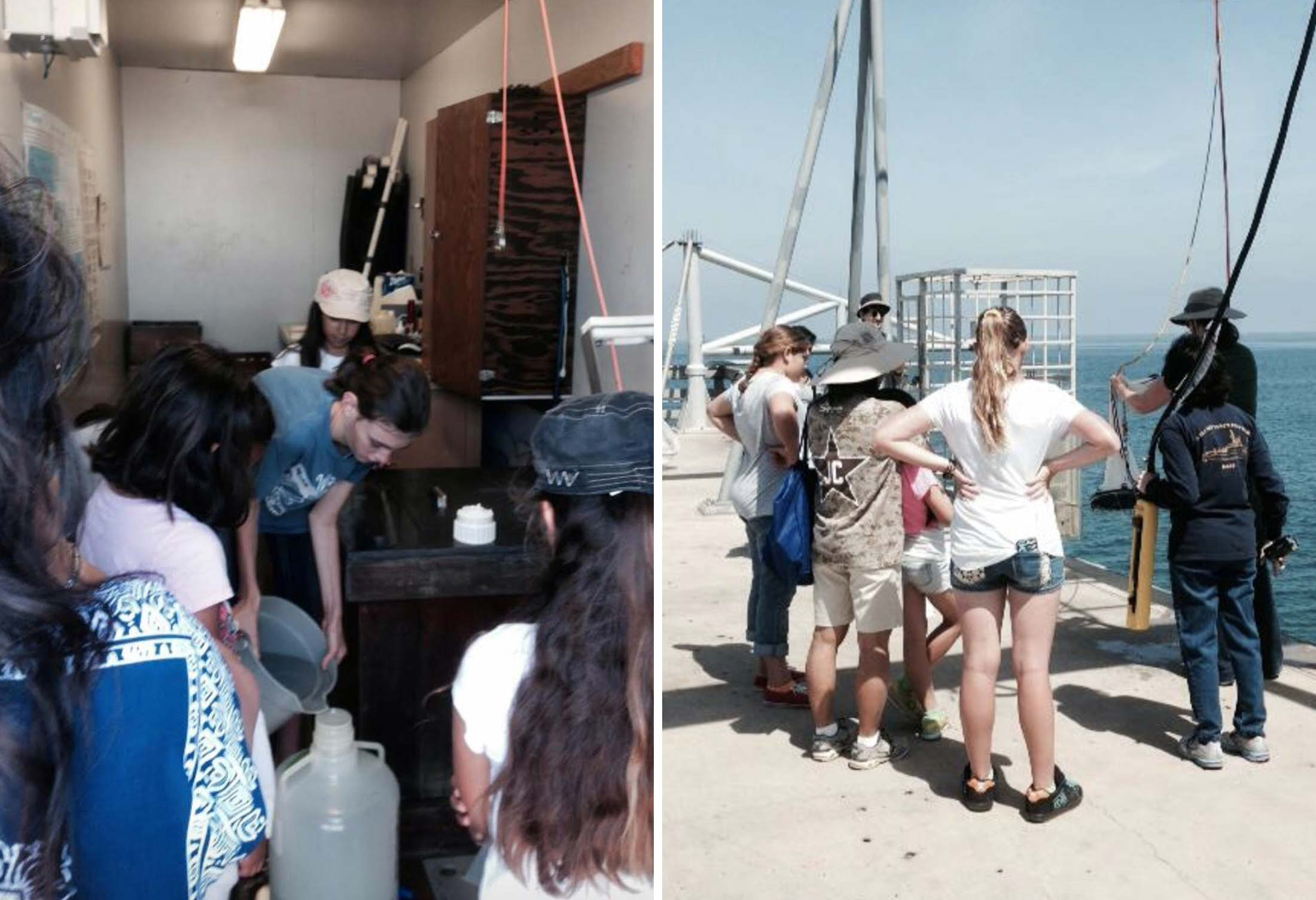 Ocean Sampling Day 2014 with local Girl Scout groups.